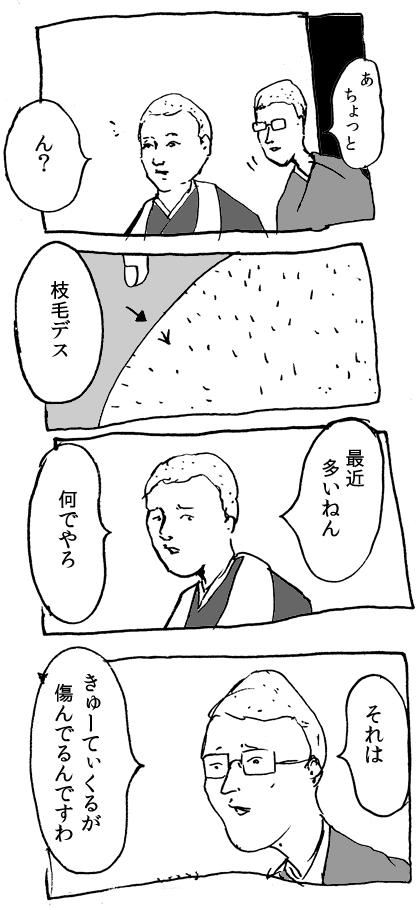 キューティクル